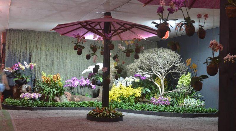 Festa de Flores e Morangos de Atibaia termina neste domingo