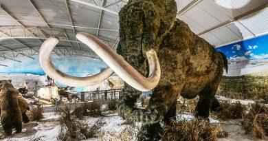 Zooparque Itatiba inaugura maior museu de história natural da América Latina