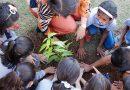 Educação promove Semana do Meio Ambiente com ações de conscientização