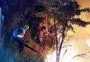 Queda de balão provoca incêndio florestal no Morro do Saci em Atibaia